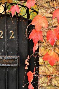 doors-211752_640