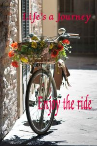 bike-enjoy